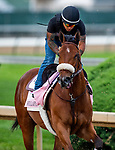 LOUISVILLE, KENTUCKY - MAY 01: Bellafina prepares for the Kentucky Oaks at Churchill Downs in Louisville, Kentucky on May 01, 2019. Evers/Eclipse Sportswire/CSM