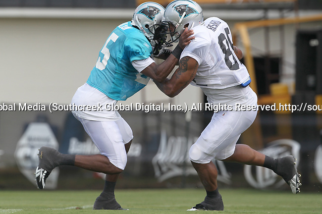 30July2010: Carolina Panther safety Marcus Hudson (#25) and wide receiver Dante Rosario (#88) practice a one-on-one drill. The Panthers held an afternoon training camp session at Wofford College in Spartanburg, South Carolina.