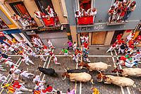 Europe,Spain,Pamplona,San Firmin festival 2018, Encierro, 8 am the bulls are released and run in the 849 m along main narrow street, while some runners fall donw