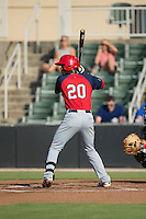 Dale Carey (20) of the Hagerstown Suns at bat against the Kannapolis Intimidators at Intimidators Stadium on July 18, 2015 in Kannapolis, North Carolina.  The Intimidators defeated the Suns 1-0.  (Brian Westerholt/Four Seam Images)