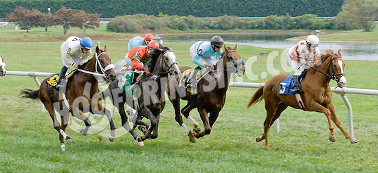 Flying Bird winning at Delaware Park on 9/26/12