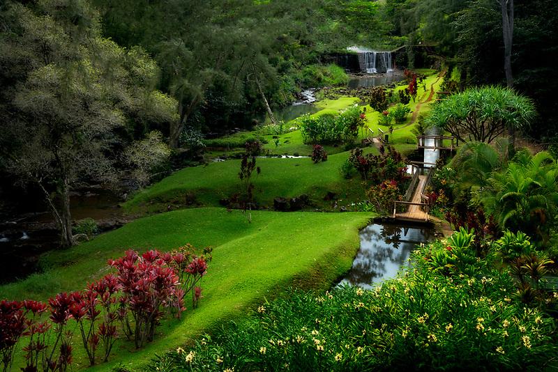 Gardens and stone dam.. Mahi Mahakonia mahogany plantation. From Wai Koa Loop Trail Kauai, Hawaii