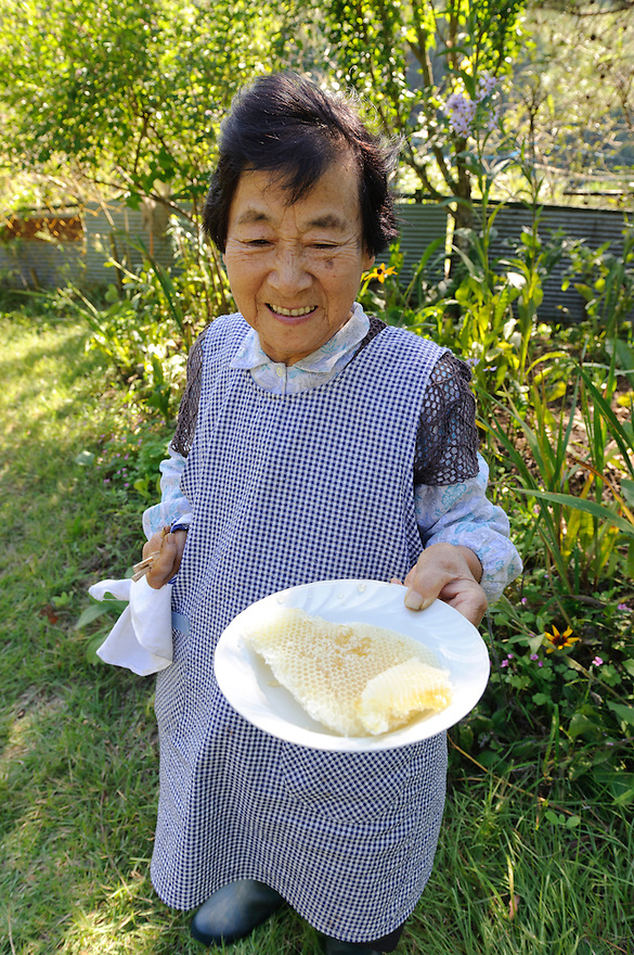 The wife of beekeeper Masahiro Tominaga holds honeycomb from one of his hives, Inadani, Nagano Pref, Japan, September 24, 2011. Inadani is home to Japanese honey-bee farms. The bees feed off red-soba flowers and the exceptionally high-quality honey they produce is sold at a premium.