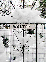 Snow settled on a garden gate, Petworth, Sussex.