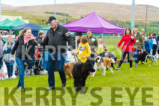 At the Dog Show in aid of the  Irish Guide Dogs at  John Mitchels sports Complex on Monday