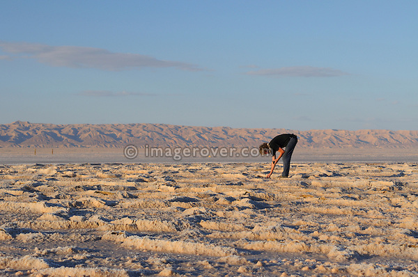 Africa, Tunisia, Chott el Jerid between Kebili and Tozeur. Desert traveller Stephan collecting samples of the Chott el Jerid's salty surface. --- No releases available, but releases may not be needed for certain uses. --- Info: Image belongs to a series of photographs taken on a journey to southern Tunisia in North Africa in October 2010. The trip was undertaken by 10 people driving 5 historic Series Land Rover vehicles from the 1960's and 1970's. Most of the journey's time was spent in the Sahara desert, especially in the area around Douz, Tembaine, Ksar Ghilane on the eastern edge of the Grand Erg Oriental.