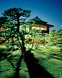 JAPAN, Kyushu, night shot of trees and Yoyokaku Ryokan