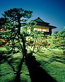 JAPAN, Kyushu, night shot of trees and Yoyokaku Ryokan