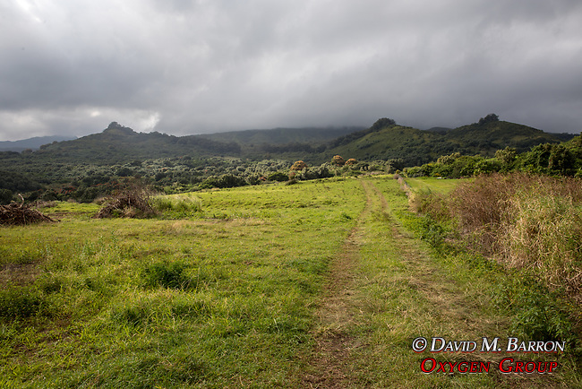 View From Hana Hwy