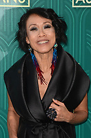 HOLLYWOOD, CA - AUGUST 7: Tan Kheng Hua at the premiere of Crazy Rich Asians at the TCL Chinese Theater in Hollywood, California on August 7, 2018. <br /> CAP/MPI/DE<br /> &copy;DE//MPI/Capital Pictures