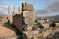 Ruined pillars of the Forum or marketplace in the foreground, and the columns of the tetrastyle Capitoline Temple in the background, built 218 AD on top of an existing shrine, Volubilis, Northern Morocco. Volubilis was founded in the 3rd century BC by the Phoenicians and was a Roman settlement from the 1st century AD. Volubilis was a thriving Roman olive growing town until 280 AD and was settled until the 11th century. The buildings were largely destroyed by an earthquake in the 18th century and have since been excavated and partly restored. Volubilis was listed as a UNESCO World Heritage Site in 1997. Picture by Manuel Cohen