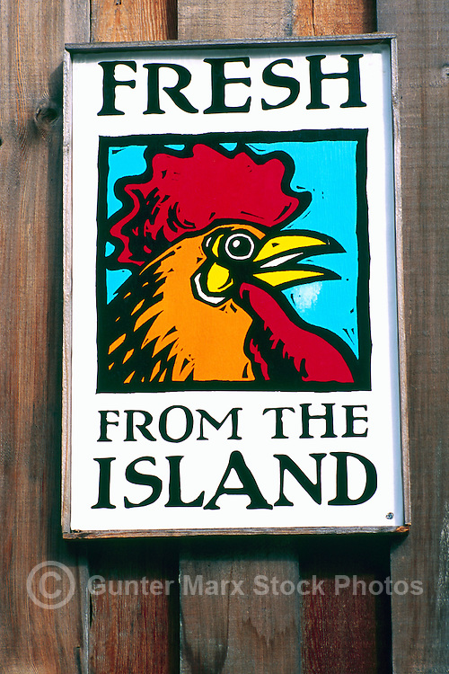 A Poster Sign advertising Fresh Local Island Farm Produce and Food Products