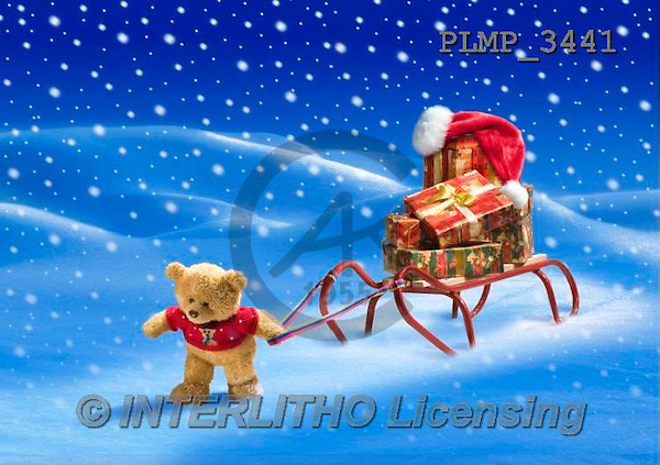 Marek, CHRISTMAS ANIMALS, WEIHNACHTEN TIERE, NAVIDAD ANIMALES, teddies, photos+++++,PLMP3441,#Xa# in snow,outsite,