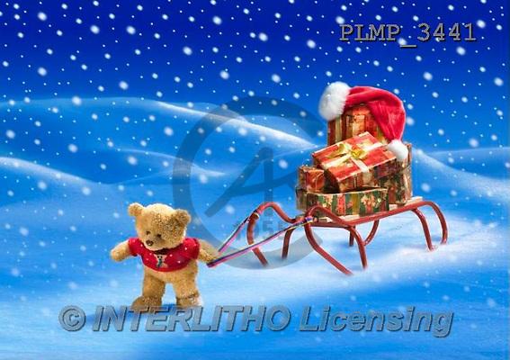 Marek, CHRISTMAS ANIMALS, WEIHNACHTEN TIERE, NAVIDAD ANIMALES, teddies, photos+++++,PLMP3441,#Xa# in snow,outsite,
