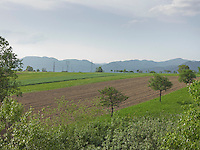 OR_LOCATION_45023