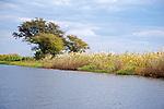 Dusk on the Chobe River in Chobe National Park in Botswana in Africa