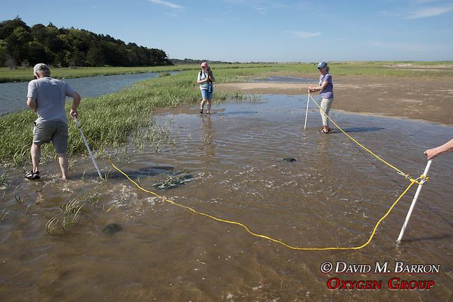 Bob, Diane & Mary On Horseshoe Crab Survey