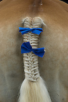 A horse tail is tied with a bow at the draft horse competition at the Knox County Fair in Mt. Vernon, Ohio.<br />
