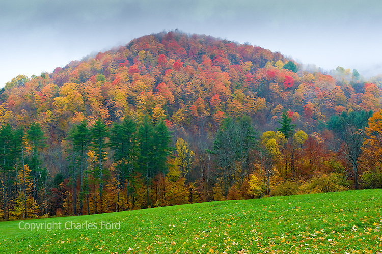Fall foliage covers a misty hillside along Cloudland Road, Vermont.