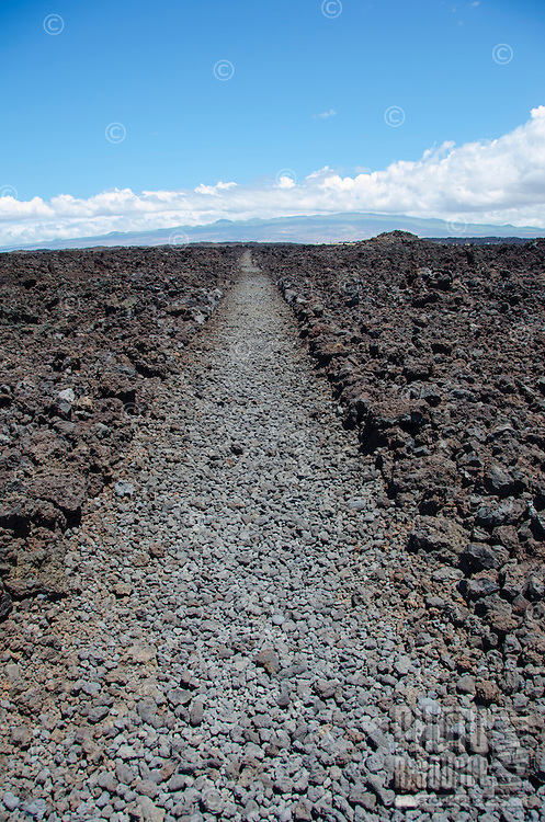 On the lava rock road to Keawaiki Bay, looking inland, north of Kona, Big Island. This area was covered by a 1859 eruption from Mauna Loa and was the site of a heiau (Hawaiian temple) and ancient Hawaiian settlement.
