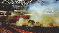 GUARULHOS, SP 02.09.2013 - queimada em mata provoca fumaca nas margens da Rodovia Ayrton Senna na altura de Guarulhos no estado de Sao Paulona tarde desta segunda feira, 02.   (Foto: Alan Morici / Brazil Photo Press).