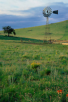Windmill near Springville<br />