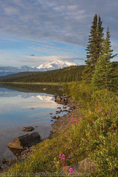 Mt. Denali, North America's tallest Peak. Denali National Park, Alaska.