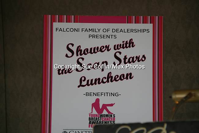 Poster of  the Shower with the Stars which benefits the Young Women's Breast Cancer Foundation and Cancer Caring Center of Pittsburgh on March 26, 2010 at the LeMont Restaurant, Pittsburgh, PA. (Photo by Sue Coflin/Max Photos)