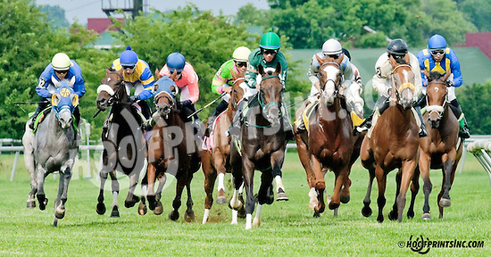 Hold Our Destiny winning at Delaware Park on 6/17/13