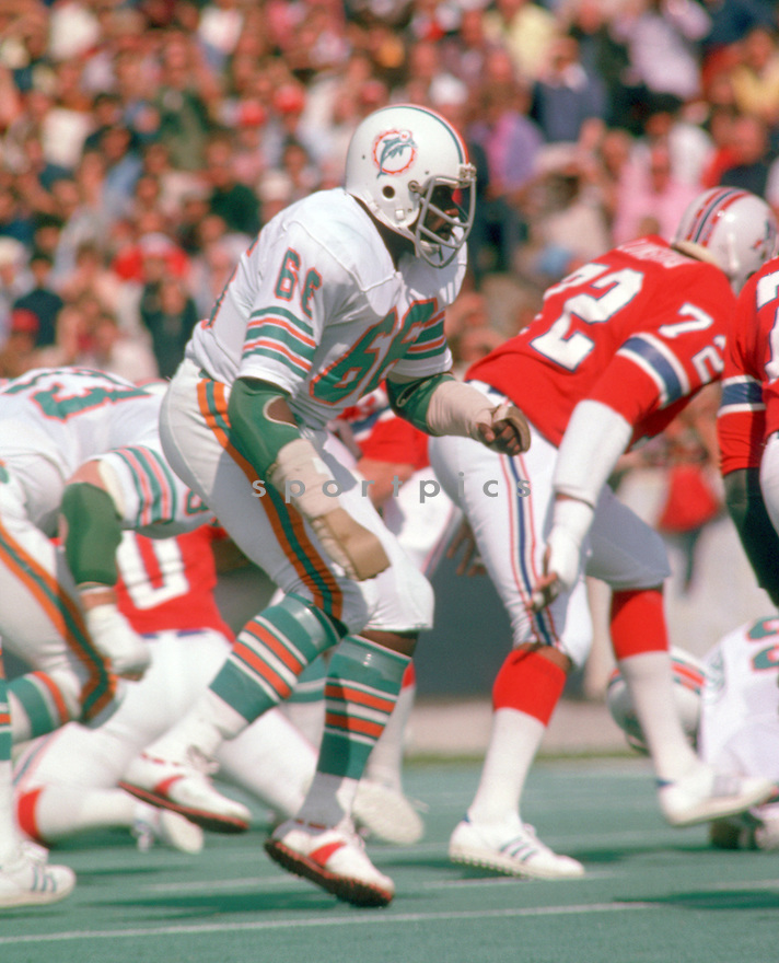 Miami Dolphins Larry Little (66) during a game from his 1975 season with the Miami Dolphins. Larry Little played for 14 seasons, with 2 different teams, was a 5-time Pro Bowler and was inducted to the Pro Football Hall of Fame in 1993.(SportPics)