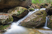 A small cascade along Tecumseh Brook, near the Mt Tecumseh Trail (ski area side), in Waterville Valley of New Hampshire.