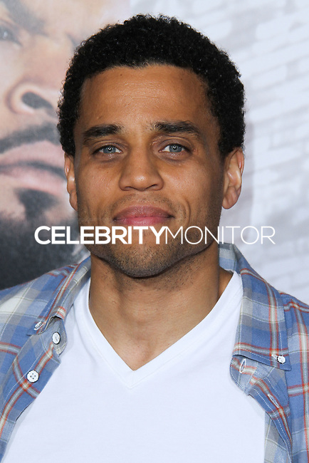 "HOLLYWOOD, CA - JANUARY 13: Michael Ealy  at the Los Angeles Premiere Of Universal Pictures' ""Ride Along"" held at the TCL Chinese Theatre on January 13, 2014 in Hollywood, California. (Photo by David Acosta/Celebrity Monitor)"