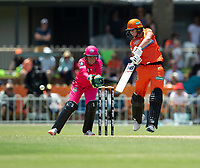 24th November 2019; Lilac Hill Park, Perth, Western Australia, Australia; Womens Big Bash League Cricket, Perth Scorchers versus Sydney Sixers; Meg Lanning of the Perth Scorchers plays through the off side during her innings - Editorial Use