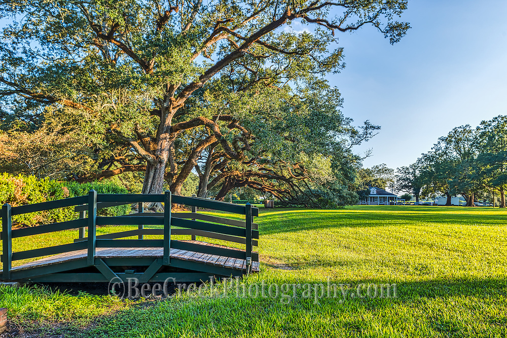 This is a cute little bridge at Oak Alley where you can see the many oaks on the plantation grounds as the sun was startilng to go down.