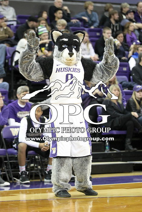 Dec 28, 2014:  Washington mascot Harry during the game against Stony Brook.  Stony Brook defeated Washington 62-57 at Alaska Airlines Arena in Seattle, WA.
