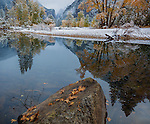 Yosemite National Park, CA: Calm reflections along the Merced River after a new snowfall with Sentinel Dome in the distance in late fall.