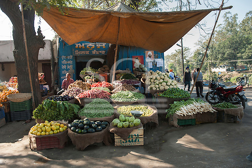 Amritsar, Punjab, India. a roadside market stall selling fruit and vegetables with writing in punjabi script.