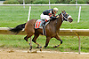 Dial Direct winning at Delaware Park on 10/3/12