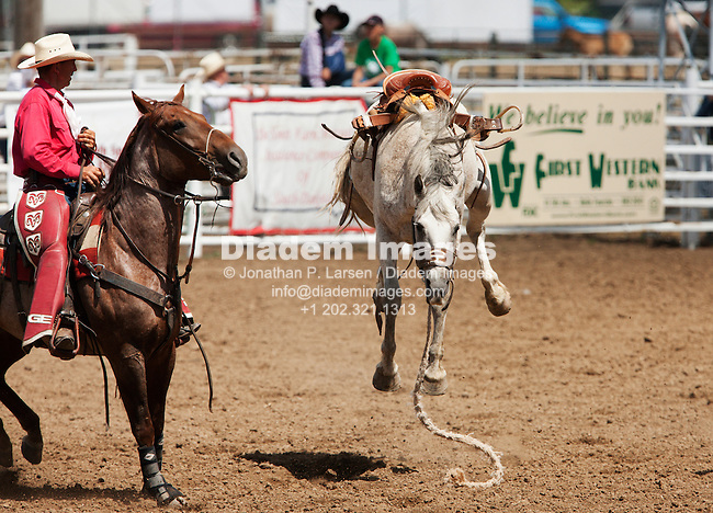 BELLE FOURCHE, SOUTH DAKOTA - JULY 4:  A saddled bronc continues to buck after throwing its rider during the 90th annual Black Hills Roundup rodeo on July 4, 2009 in Belle Fourche, South Dakota.  (Photograph by Jonathan P. Larsen)