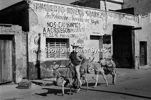 Mazatlan Mexico, man riding donkeys into town.