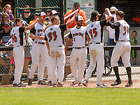 GREEN BAY - June 2015: Green Bay Bullfrogs infielder Ryan Donovan (30) in congratulated by teammates following a home run during a Northwoods League game against the Kenosha Kingfish on June 21st, 2015 at Joannes Park in Green Bay, Wisconsin. Green Bay defeated Kenosha 10-7. (Brad Krause/Krause Sports Photography)