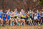 LOUISVILLE, KY - NOVEMBER 18: Runners leave the start line during the Division I Men's Cross Country Championship held at E.P. Tom Sawyer Park on November 18, 2017 in Louisville, Kentucky. (Photo by Tim Nwachukwu/NCAA Photos via Getty Images)