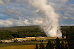 Huge column of geothermal steam from eruption of Old Faithful Geyser, Yellowstone National Park, Wyoming