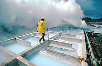Geothermal Power Plant, cooling pools. Hawaii USA power plant.