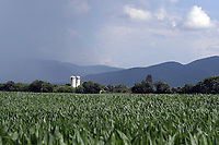 Agricultural farms located in Central Virginia. Photo/Andrew Shurtleff Photography, LLC