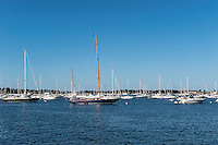 Boats in harbor, Newport, Rhode Island, USA