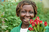 KENYA Thika near Nairobi, Simbi Roses is a fair trade rose flower farm which produces rose as cutting flowers for export to europe, worker Lucy Waithira Ngunga, 44 years old, wearing a wig / KENIA Thika bei Nairobi, Simbi Roses ist eine fairtrade zertifizierte Blumenfarm die Rosen fuer den Export nach Europa anbauen, Pflueckerin Lucy Waithira Ngunga, 44 Jahre alt