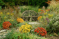 Handmade grapevine bench in intimate nich of fall garden with birdhouse and blooming flowers including mums, asters, goldenrod, sumac, lambs ear, and ornamental grasses