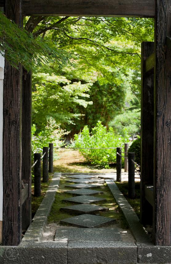 Japanese momiji maple shades the entrance to Tenjuan temple, Kyoto.