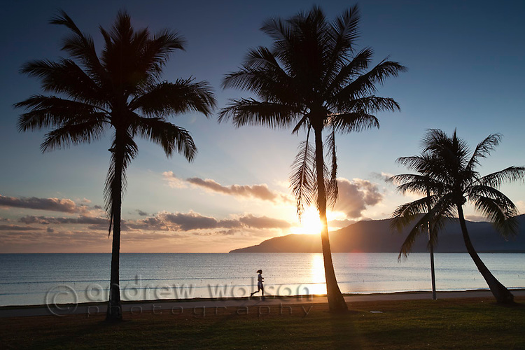 Jogger on the Esplanade at sunrise.  Cairns, Queensland, Australia